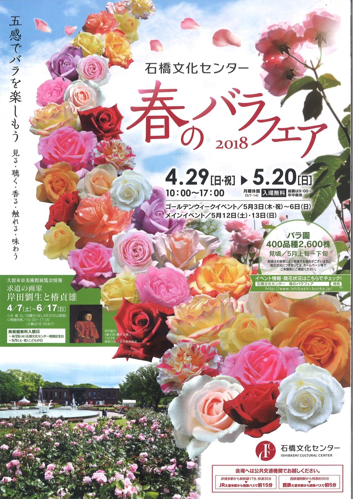 石橋文化センター 春のバラフェア2018