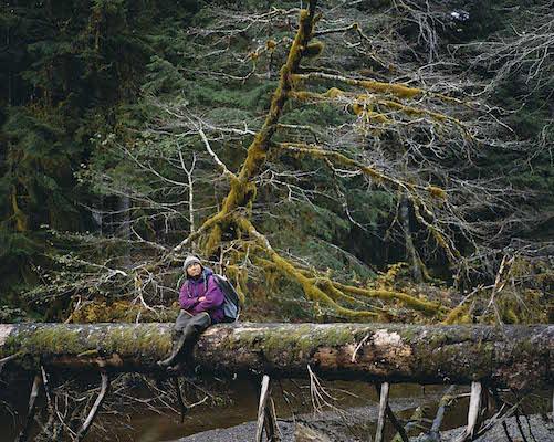 南東アラスカの森で倒木に腰かける