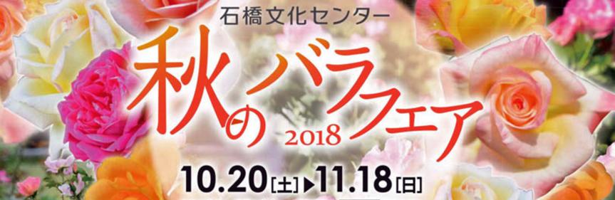 石橋文化センター 秋のバラフェア2018