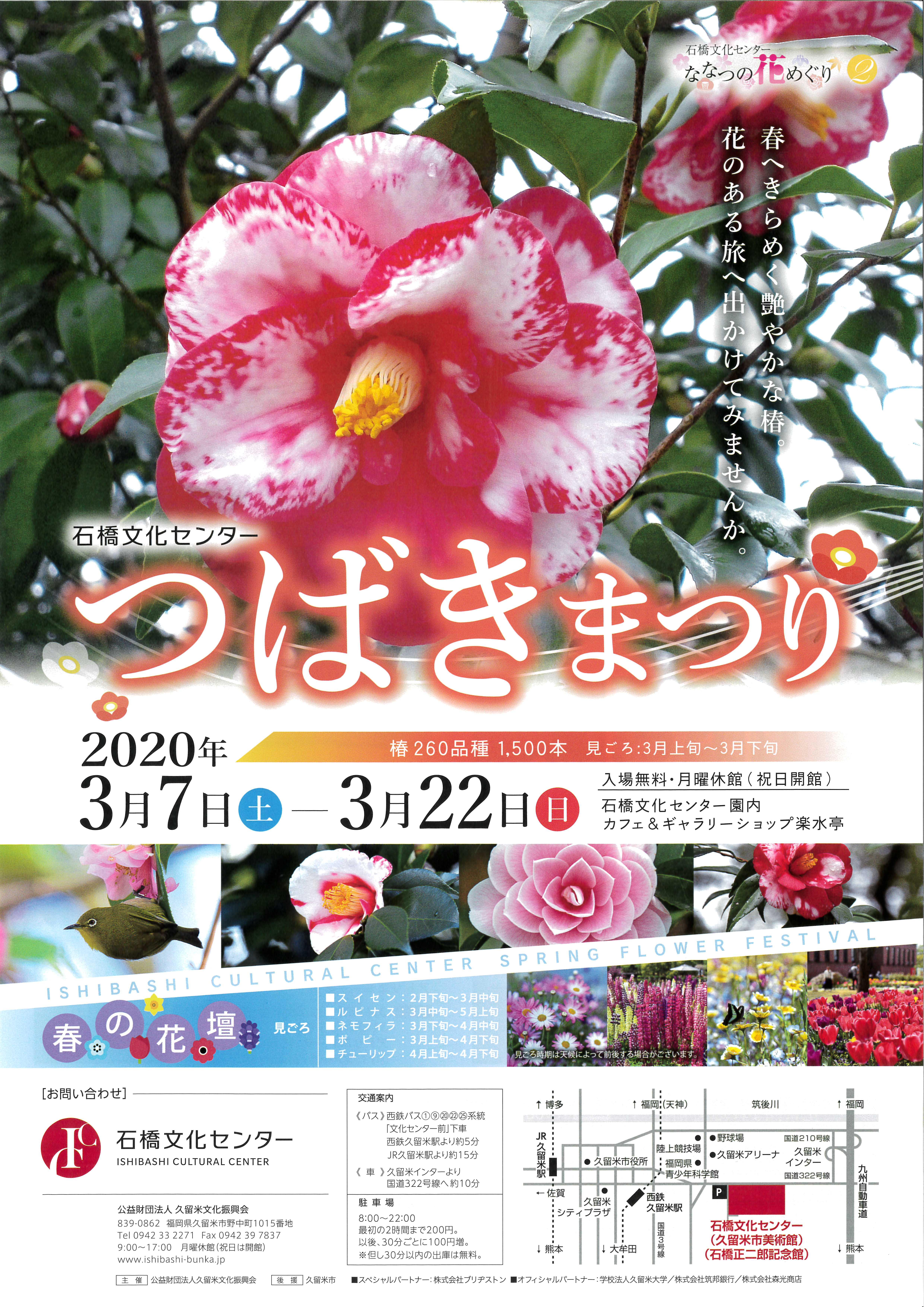 春の花まつり2020 つばきまつり